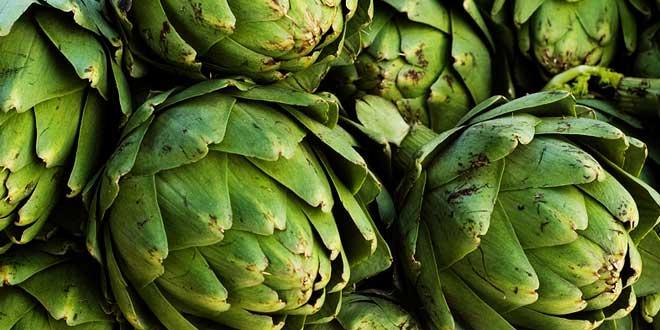 alcachofa--rica-en-fibra