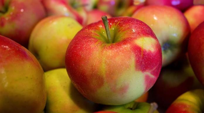 10 alimentos que te ayudan a controlar el apetito