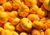 12 alimentos ricos en magnesio, un mineral indispensable