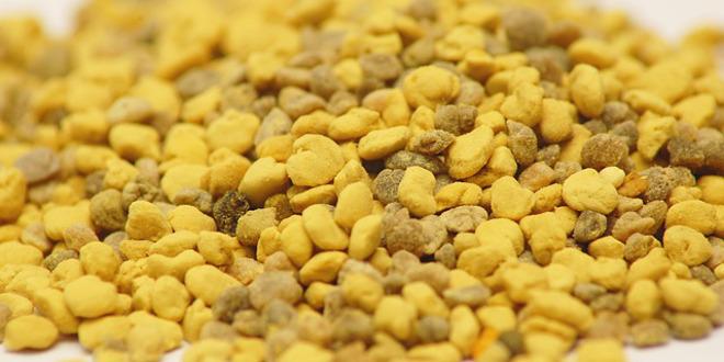 La alergia al polen es la más frecuente de las alergias estacionales y está causada principalmente por el polen de las plantas, los árboles y el césped