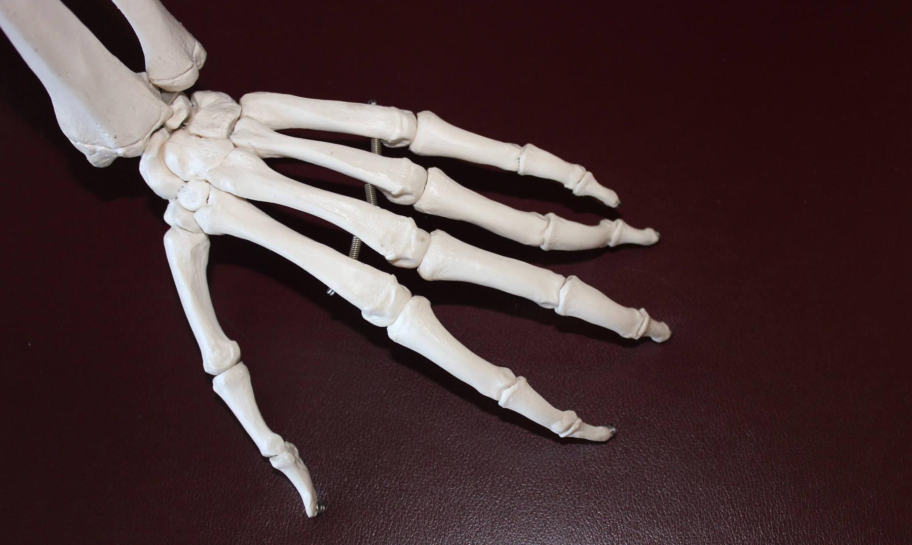 Duele la espalda en el campo de los riñones de la causa después del entrenamiento
