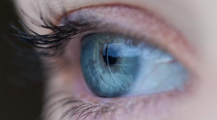 14 alimentos para mejorar la vista y prevenir la pérdida de visión