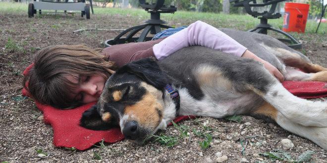 La siesta ayuda a controlar la presión arterial, según un estudio