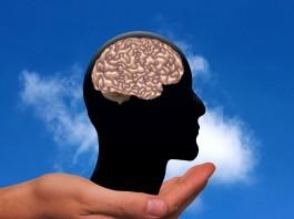 3 razones por las que el ejercicio es bueno para tu cerebro