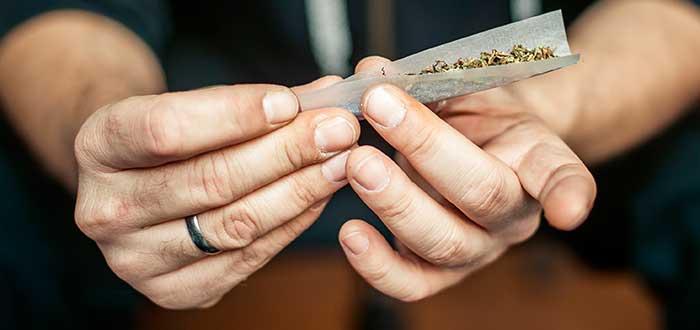 Legalización cannabis 3