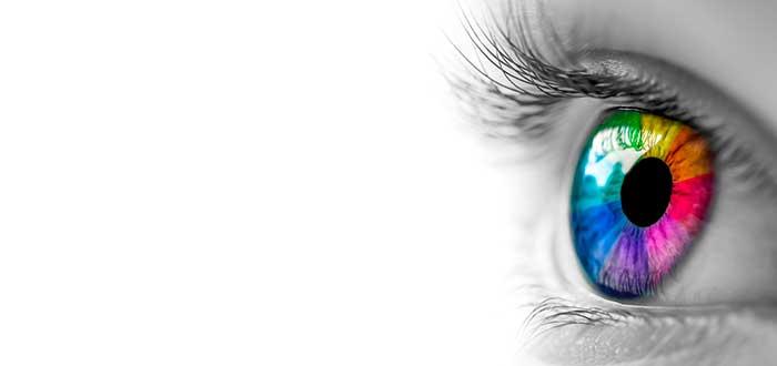 Cómo es el ojo humano. Los secretos que debes conocer. 1