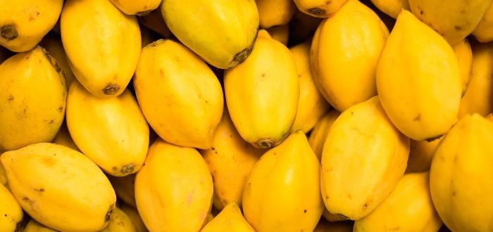 Variedades de la papaya
