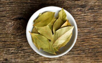 Beneficios del laurel